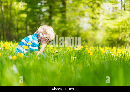 Boy sitting in field of tall grass - Stock Photo