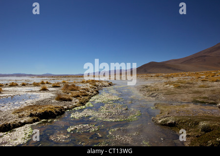 Hot springs and mud pools, Aguas Calientes, Southwest Highlands, Bolivia, South America - Stock Photo