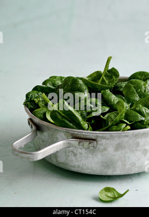 Close up of pan of cooked spinach - Stock Photo