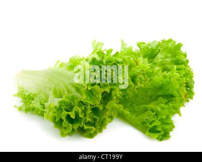 Fresh lettuce leaves isolated on white background - Stock Photo