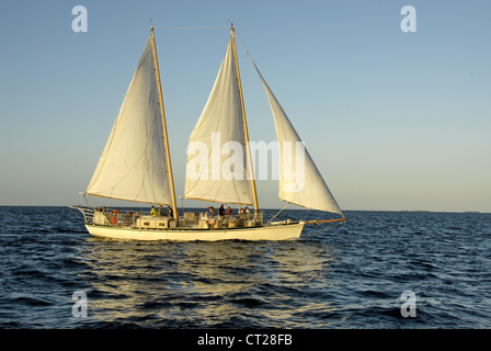 Sunset cruise in Key West, Monroe County,  Florida, USA - Stock Photo