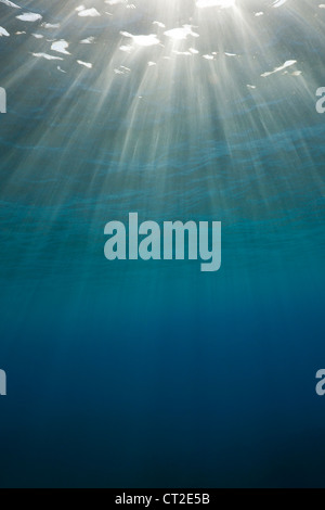 Sunbeams filtering through Water Surface, Caribbean Sea, Dominica - Stock Photo