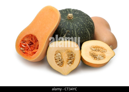 Squash, Squashes, Acorn, Butternut, Buttercup - Stock Photo