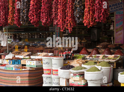 Capsicum annuum, Pepper, Sweet pepper - Stock Photo