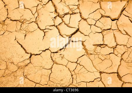 dry season with cracked ground - Stock Photo