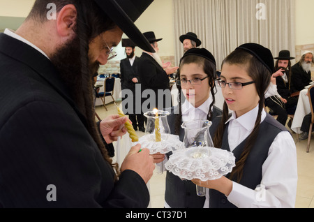 JERUSALEM, ISRAEL - JUNE 11: Jewish orthodox wedding on June 11, 2012 in Jerusalem. Israel. - Stock Photo