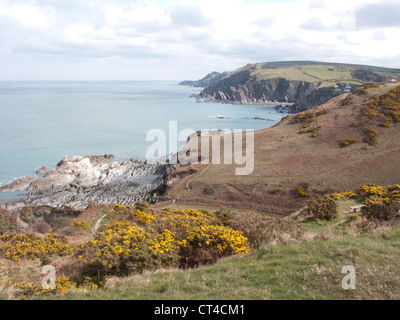 Devon Coastline looking East towards Lee Bay from near Bull Point - Stock Photo