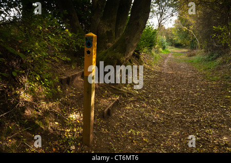 A way-marked post in the sunken track of the Icknield Way on the Dunstable Downs, Chiltern Hills, Bedfordshire, - Stock Photo