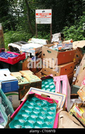 Rubbish fly tipped in front of No Dumping warning sign, Bromley, Kent - Stock Photo