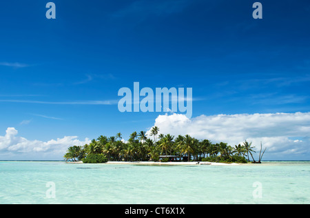 Uninhabited or desert island in the Blue Lagoon inside Rangiroa atoll, an island near Tahiti in French Polynesia. - Stock Photo