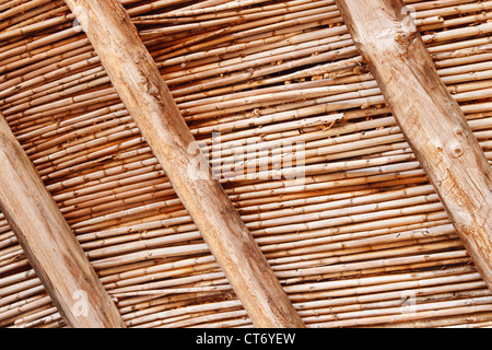 ... Wooden Roof Beams And Canes On Interior Of Old Derelict Building On  Fuerteventura, Canary Islands