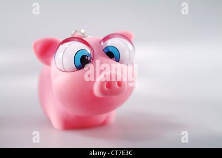 Plastic Toy Pig Stock Photo Royalty Free Image 1124500