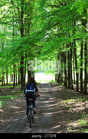 Young woman riding bicycle along track in woodland area - Stock Photo