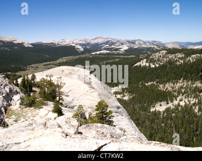 View from Lembert Dome in Tuolumne Meadows part of the Yosemite National Park - Stock Photo