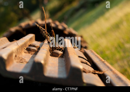 Detail of tracked excavator working on field drainage improvements to increase land quality for livestock grazing - Stock Photo