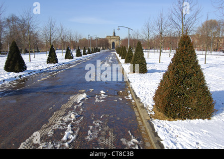 Shaped conifer trees and snow covering in Glasgow Green, Scotland - Stock Photo