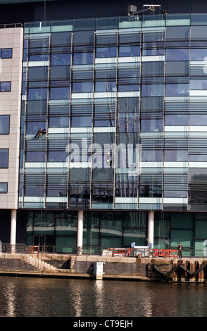 Window cleaners abseiling  down the front of one of the office buildings BBC Media City Salford Quays Greater Manchester - Stock Photo