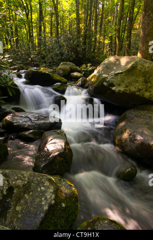 Roaring Fork Creek In The Great Smoky Mountains National