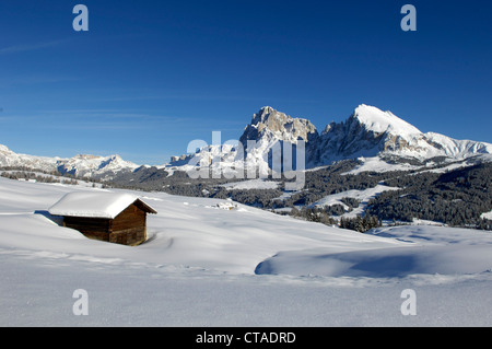 Wooden hut covered with snow, Plattkofel, Seiser Alm, Valle Isarco, South Tyrol, Trentino-Alto Adige, Italy - Stock Photo