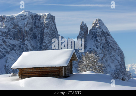 Santner peak, Plattkofel Alm, UNESCO world natural heritage, Seiser Alm, Valle Isarco, South Tyrol, Trentino-Alto - Stock Photo