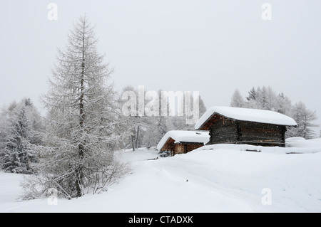 Alpine hut covered with snow, Seiser Alm, Valle Isarco, South Tyrol, Trentino-Alto Adige, Italy - Stock Photo