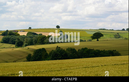 Lincolnshire Wolds in Summer from bluestone heath road - Stock Photo