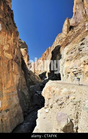 Woman looking into a gorge, between Wanla and Honupatta, Zanskar Range Traverse, Zanskar Range, Zanskar, Ladakh, - Stock Photo