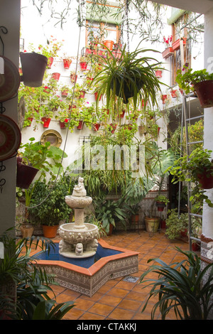 Flowers and plants on a typical spanish balcony in the albaicin stock photo royalty free image - Care geraniums flourishing balcony porch ...