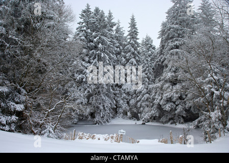 Landscape near St Maergen, Mill pond in Winter, Black Forest, Baden-Wuerttemberg, Germany, Europe - Stock Photo