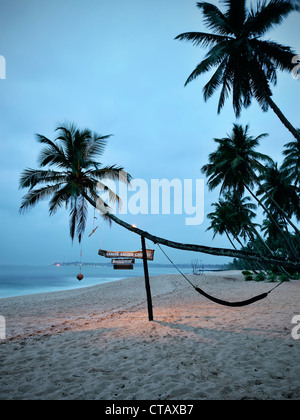 Crooked palm tree with hammock at Tangalle beach at dawn, Sri Lanka, Indian Ocean - Stock Photo