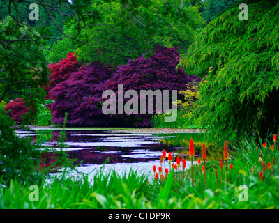 Picturesque pond surrounded by blossoming trees, flower and bushes - Stock Photo