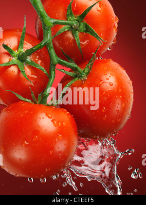 Fresh juicy appetizing tomatoes on the wine splashed with water - Stock Photo