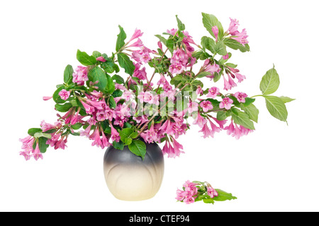 Bush spring branches with pink flowers in ceramic pot isolated - Stock Photo
