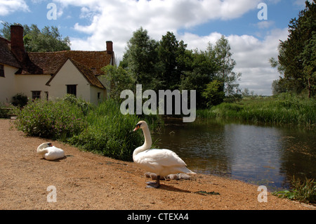 Willy Lott's Cottage at Flatford Mill, the setting for John Constable's famous painting 'The Hay Wain' - Stock Photo