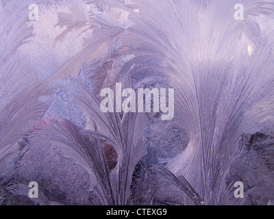 Window Frost, Fern Frost, Frost Flowers This image is of frost on a car windscreen - Stock Photo