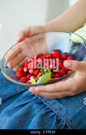 Close-up of hands holding a bowl of delicious fresh and ripe wild strawberries - Stock Photo