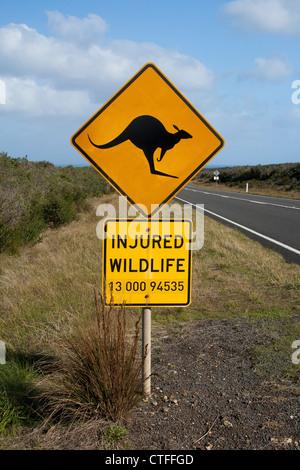 Kangaroo warning sign in Australia. - Stock Photo