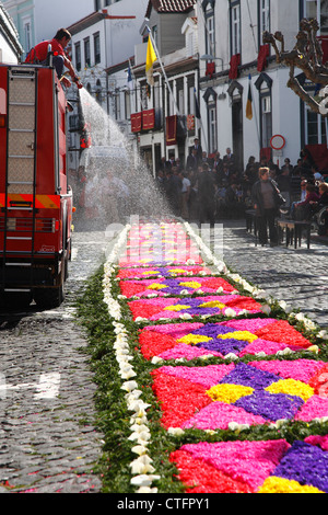 Fire truck spraying water on flower carpet during religious festival at Ponta Delgada, Azores islands. - Stock Photo