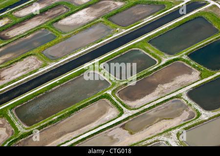 The Netherlands, Broek in Waterland. Polder called Volgermeerpolder. Nature reserve. Former garbage dump. Aerial. - Stock Photo