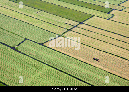 The Netherlands, Broek in Waterland, Farmer with tractor collecting grass. Aerial. - Stock Photo
