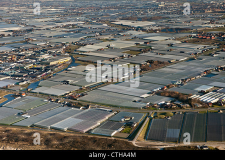 The Netherlands, Monster, Westland region. Horticulture in greenhouses. Aerial. - Stock Photo