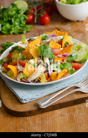 Spicy chicken nachos - Stock Photo