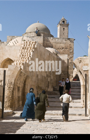 Inside the Citadel, Aleppo, Syria. UNESCO World Heritage Site - Stock Photo