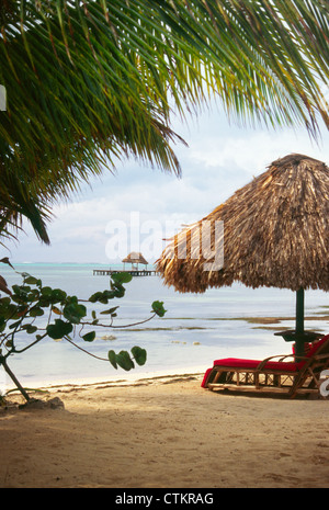 A cabana and palm tree sitting on the beach in front of the Capricorn restaurant on Ambergris Belize near San Pedro. - Stock Photo