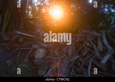 Late summer sunlight filters through a pile of old wood in a Suffolk farmyard. - Stock Photo