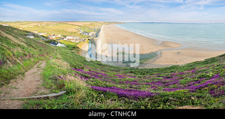 View over bell heather to Newgale and St Bride's Bay, Pembrokeshire, Wales - Stock Photo
