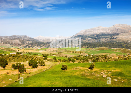 Andalusia landscape, hills covered with green meadows and fields, mountains on the horizon in southern Spain. - Stock Photo
