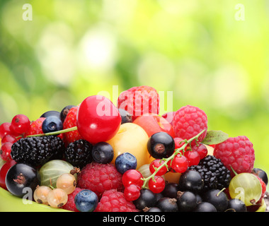 Variety of berries on summer foliage. - Stock Photo