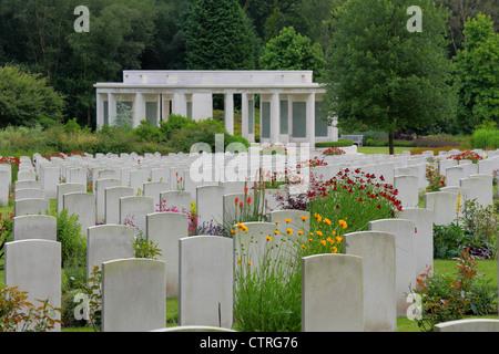 Cemetery Bloom