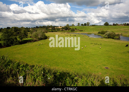 Across the fields from the Shropshire Union canal near Audlem, Cheshire looking North West towards Nantwich, UK - Stock Photo
